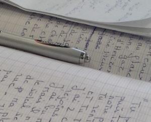 Ecrire pour vivre mieux, l'atelier d'écriture d'Ita Vita